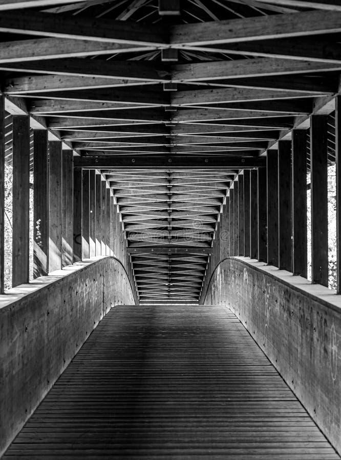 ξύλινη γέφυρα στο δάσος πόλεων της Φρανκφούρτης, hesse, Γερμανία στοκ φωτογραφίες
