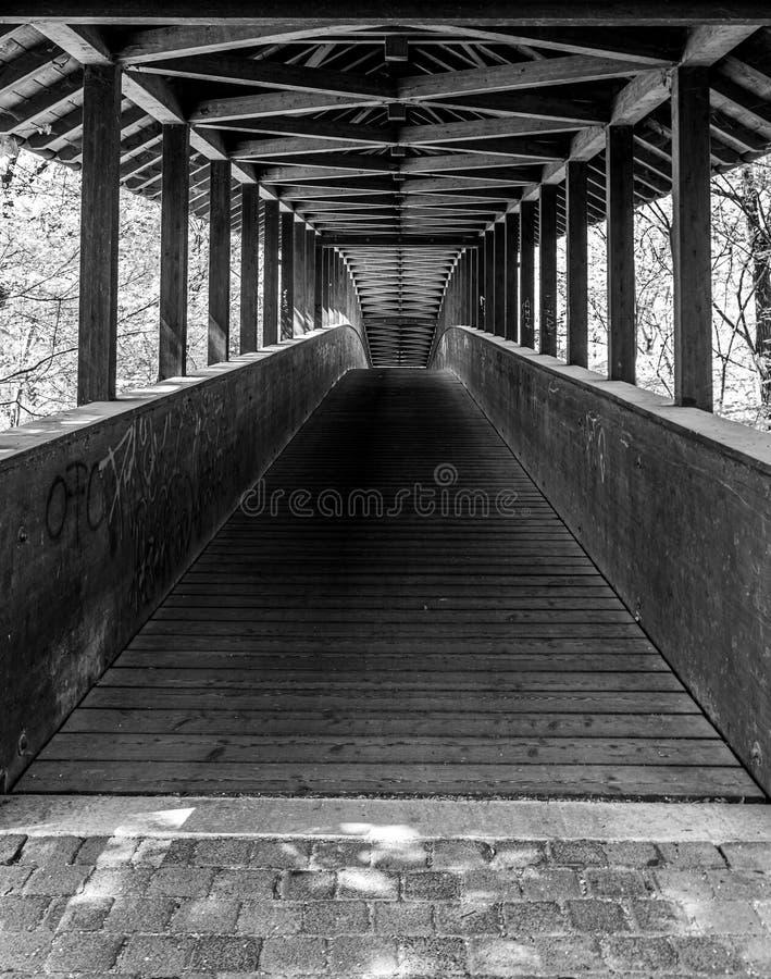 ξύλινη γέφυρα στο δάσος πόλεων της Φρανκφούρτης, hesse, Γερμανία στοκ φωτογραφίες με δικαίωμα ελεύθερης χρήσης