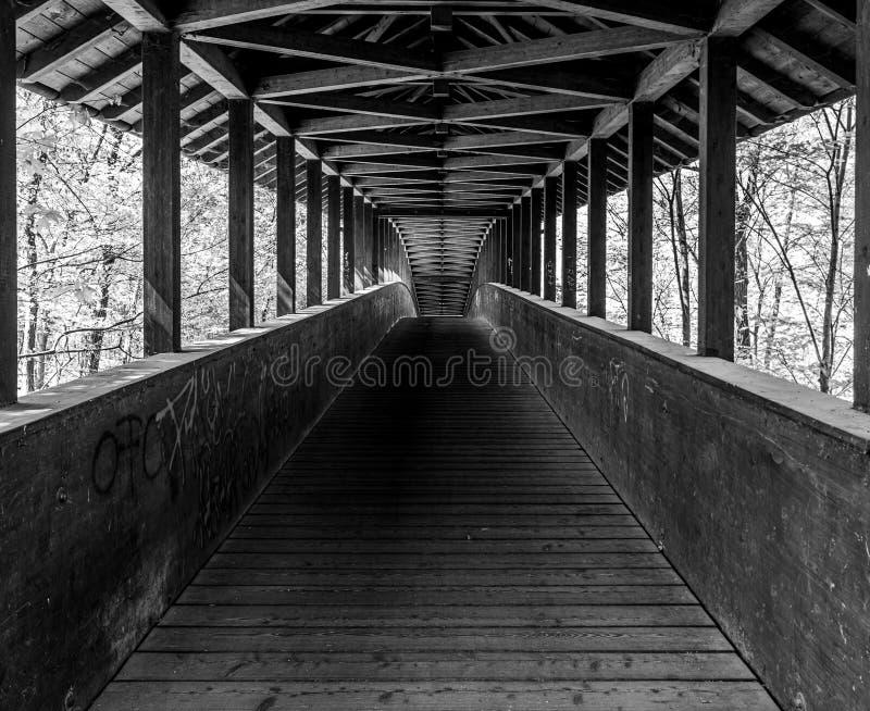 ξύλινη γέφυρα στο δάσος πόλεων της Φρανκφούρτης, hesse, Γερμανία στοκ εικόνες