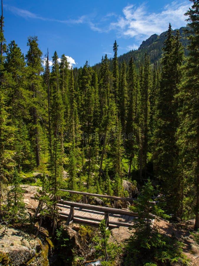 Ξύλινη γέφυρα στο δύσκολο εθνικό πάρκο βουνών βουνών δασικό, δύσκολο στοκ φωτογραφία με δικαίωμα ελεύθερης χρήσης