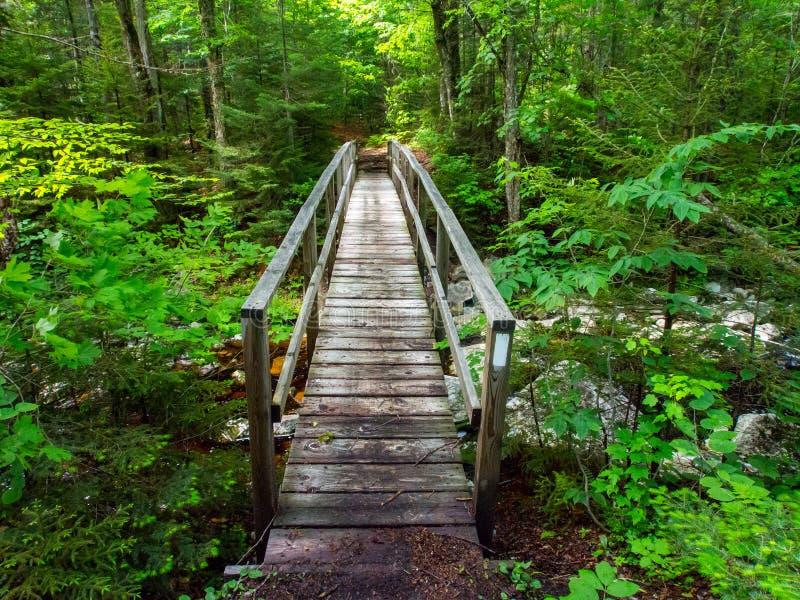 Ξύλινη γέφυρα, της όξινης απορροής πράσινα βουνά ιχνών, Βερμόντ στοκ εικόνα