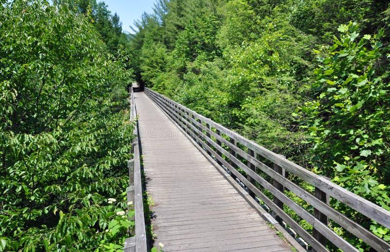 Ξύλινη γέφυρα tressel στο ίχνος αναρριχητικών φυτών της Βιρτζίνια κατάσταση της Βιρτζίνια, Ηνωμένες Πολιτείες στοκ εικόνα