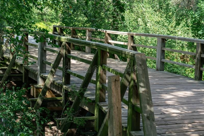 Ξύλινη για τους πεζούς γέφυρα με την άγρια φύση στοκ εικόνα με δικαίωμα ελεύθερης χρήσης