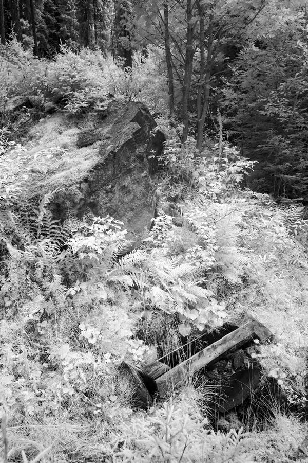 Ξύλινη γούρνα κάτω από μια πηγή γλυκού νερού από έναν βράχο στοκ φωτογραφίες