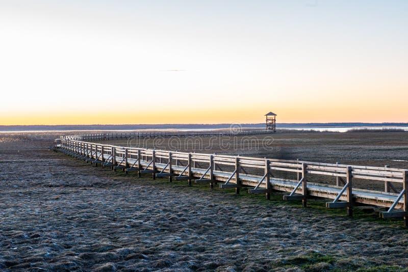 ξύλινη διάβαση γεφυρών για πεζούς σανίδων το χειμώνα κάτω από το χιόνι στοκ εικόνες με δικαίωμα ελεύθερης χρήσης