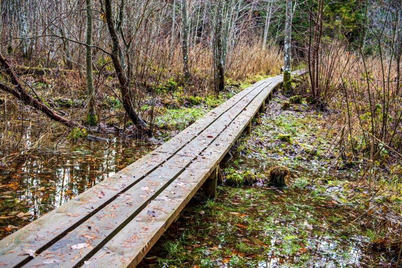 ξύλινη διάβαση γεφυρών για πεζούς σανίδων το χειμώνα κάτω από το χιόνι στοκ εικόνες