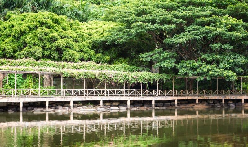 Ξύλινη διάβαση πεζών στον κήπο στοκ εικόνα