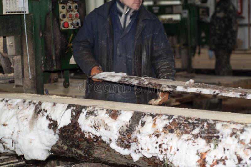 ξύλινη επεξεργασία Η κοπή συνδέεται τους πίνακες Στη χειμερινή διαδικασία ένα δέντρο στοκ φωτογραφία με δικαίωμα ελεύθερης χρήσης