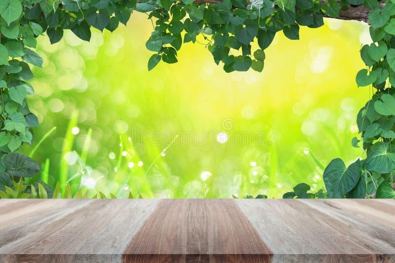 Ξύλινη επιτραπέζια κορυφή με την άμπελο φυτών, φύλλα, πράσινο πλαίσιο με το πράσινο πίσω θερμό χρυσό φως σκηνικού απεικόνιση αποθεμάτων