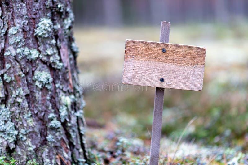 Ξύλινη κενή πινακίδα στο δάσος, μοναξιά, μοναξιά, προστασία του περιβάλλοντος στοκ εικόνα με δικαίωμα ελεύθερης χρήσης