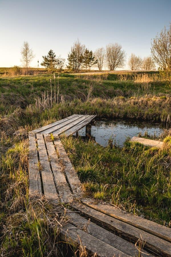Ξύλινη πορεία πέρα από τη μικρή λίμνη στον κήπο την πρώιμη άνοιξη στοκ εικόνες