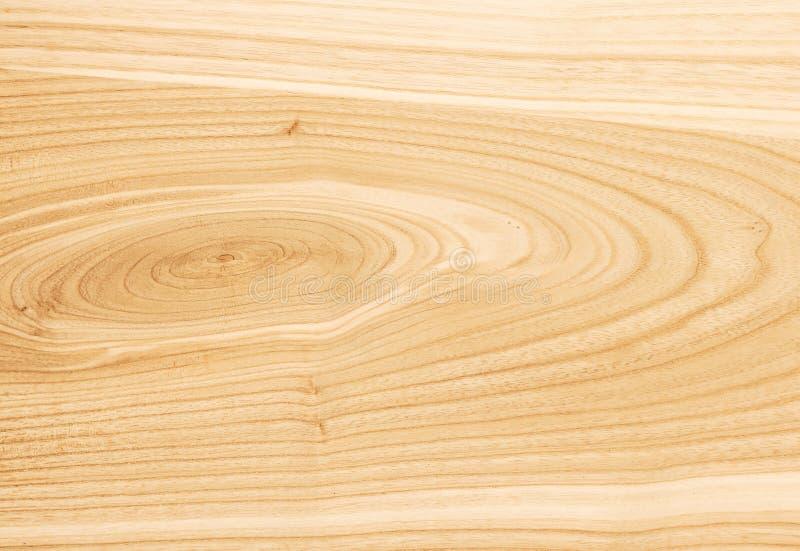 Ξύλινη σύσταση τέφρας Το υπόβαθρο του ξύλου του hardwood_ στοκ εικόνες