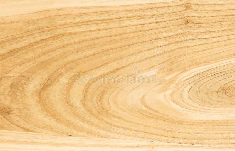 Ξύλινη σύσταση τέφρας Το υπόβαθρο του ξύλου του hardwood_ στοκ φωτογραφία