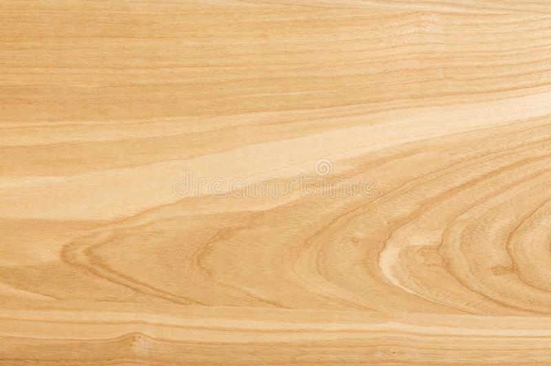 Ξύλινη σύσταση τέφρας Το υπόβαθρο του ξύλου του hardwood_ στοκ εικόνες με δικαίωμα ελεύθερης χρήσης