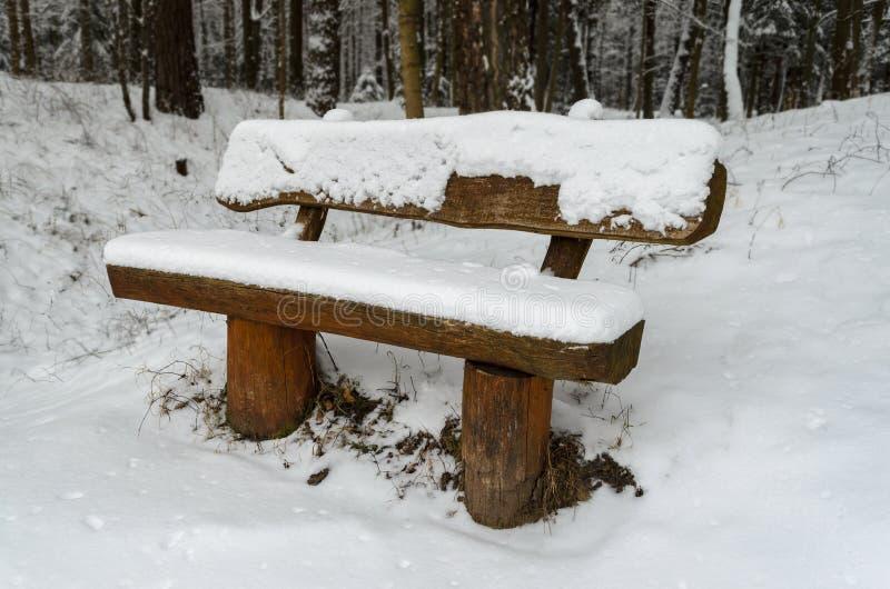 Ξύλινος πάγκος που καλύπτεται από τη ισχυρή χιονόπτωση σε ένα πάρκο στοκ εικόνες