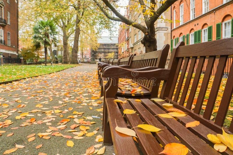 Ξύλινος πάγκος στο δημόσιο πάρκο του Λονδίνου με τα μειωμένα φύλλα το φθινόπωρο στοκ φωτογραφία