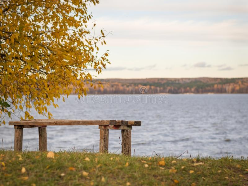 Ξύλινος πάγκος στο πάρκο φθινοπώρου στην ακτή της λίμνης στοκ φωτογραφία