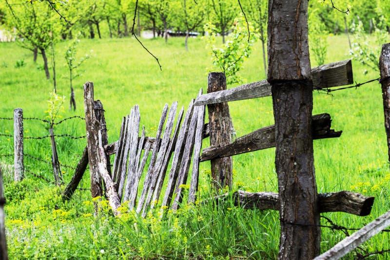 Ξύλινος φράκτης στο λιβάδι ως σύνορα από τον κήπο στοκ φωτογραφία με δικαίωμα ελεύθερης χρήσης