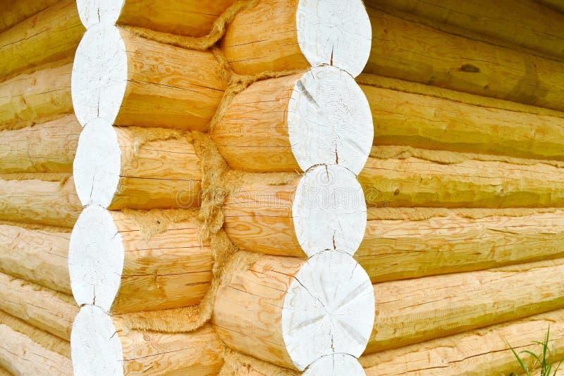 Ξύλινος φυσικός αριθμός μιας αρκούδας που αποκόπτει από ένα δέντρο στοκ εικόνα