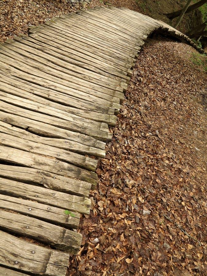 Ξύλινο μονοπάτι στο εθνικό πάρκο Plitvice στοκ εικόνες με δικαίωμα ελεύθερης χρήσης