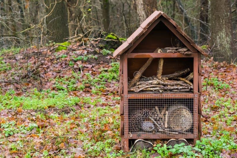 Ξύλινο σπίτι εντόμων που στέκεται στη δασική, όμορφη διακόσμηση φύσης στοκ εικόνες με δικαίωμα ελεύθερης χρήσης