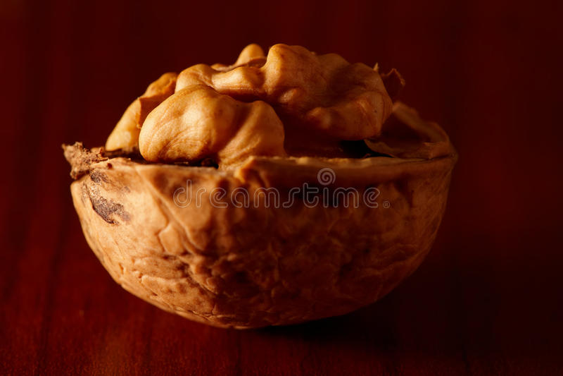ξύλο καρυδιάς στοκ εικόνα με δικαίωμα ελεύθερης χρήσης
