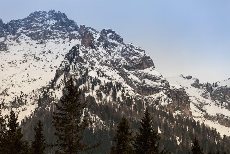 Ξύλινα δάσος του FIR και τοπίο βουνών με το χιόνι στοκ εικόνες
