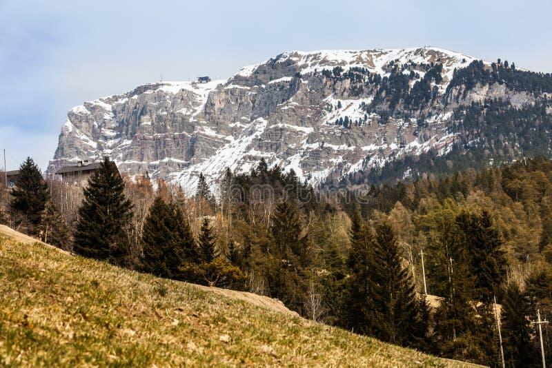 Ξύλινα δάσος του FIR και τοπίο βουνών με το χιόνι στοκ φωτογραφία