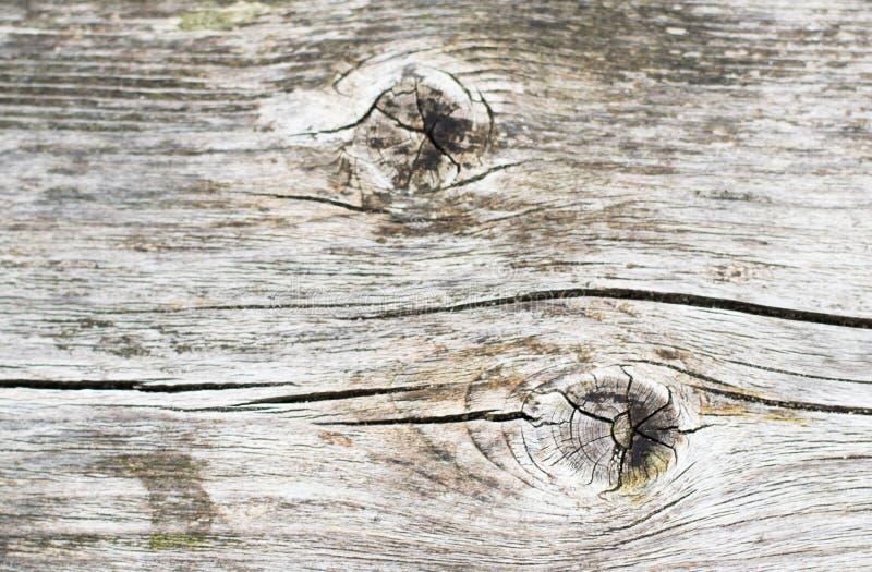 Ξύλινα δέρματα στοκ φωτογραφία με δικαίωμα ελεύθερης χρήσης