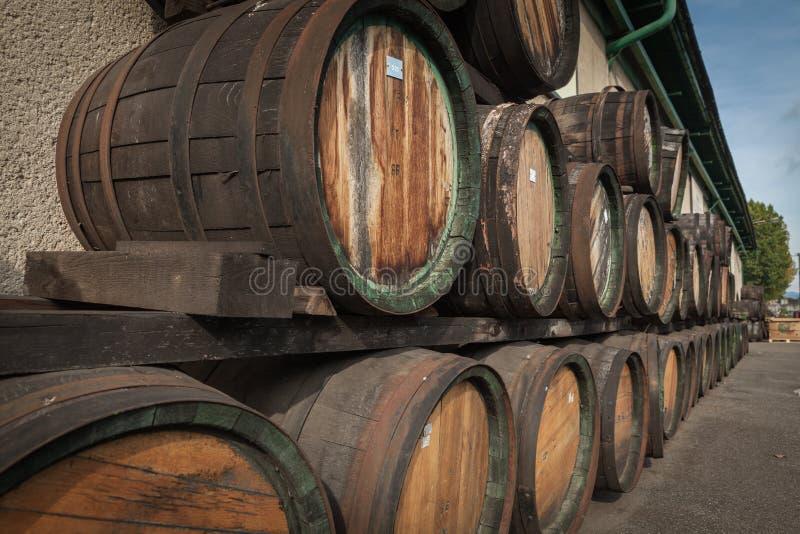 ξύλινα βαρέλια στην οινοπνευματοποιία που διπλώνεται στο ναυπηγείο στα ράφια στοκ φωτογραφία