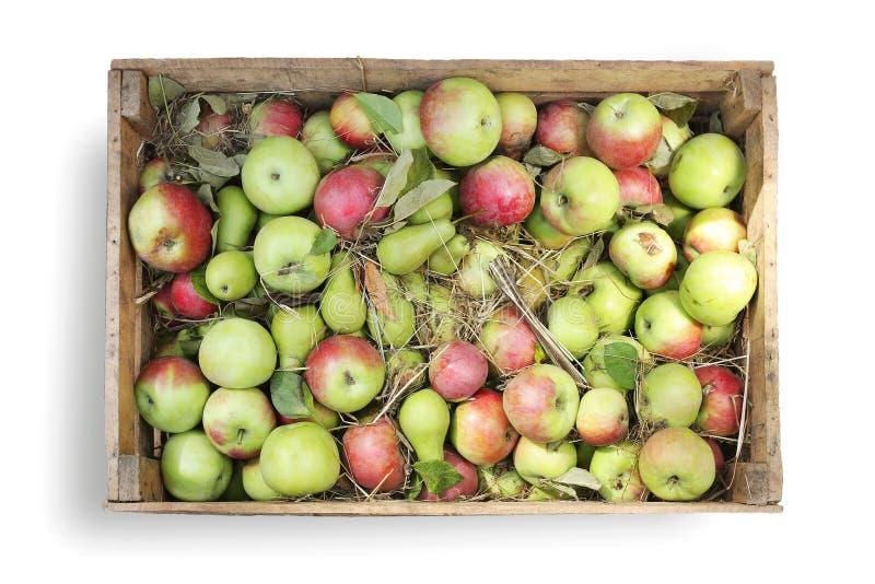 Ξύλινα κιβώτια με τα μήλα φρούτων και αχλάδια στο λευκό στοκ εικόνες