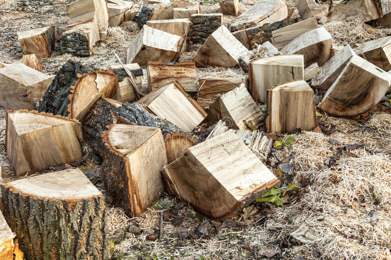 Ξύλινα κούτσουρα για την πυρκαγιά στοκ φωτογραφία με δικαίωμα ελεύθερης χρήσης