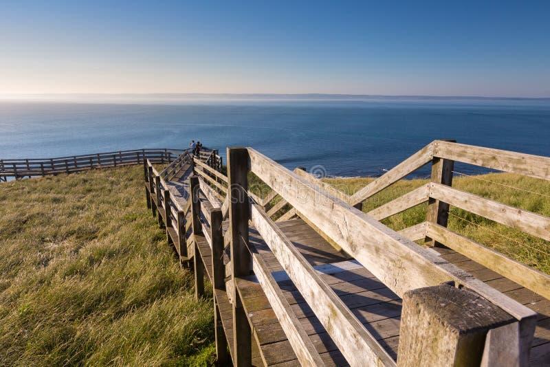 Ξύλινα σκαλοπάτια στην παραλία Ventnor στοκ εικόνες με δικαίωμα ελεύθερης χρήσης
