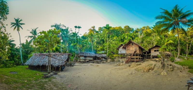 Ξύλινα σπίτια στην Παπούα στοκ εικόνα με δικαίωμα ελεύθερης χρήσης