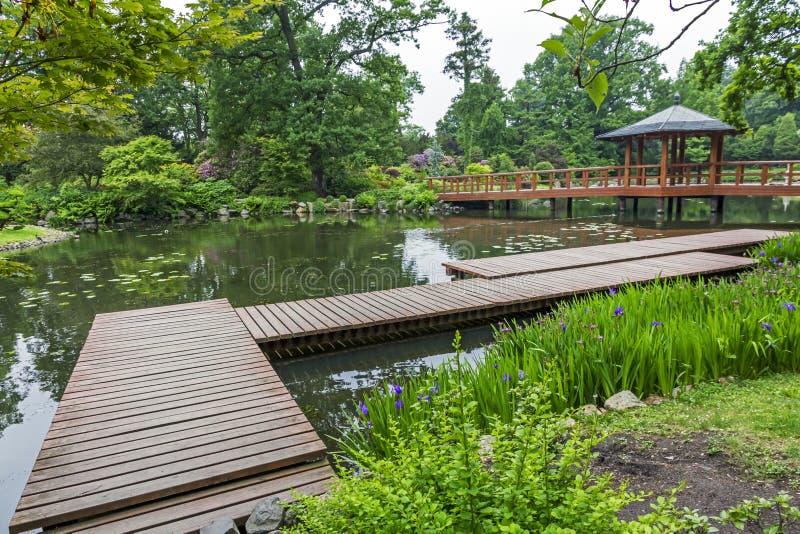 Ξύλινη αποβάθρα και όμορφες εγκαταστάσεις σε έναν ιαπωνικό κήπο στοκ εικόνα