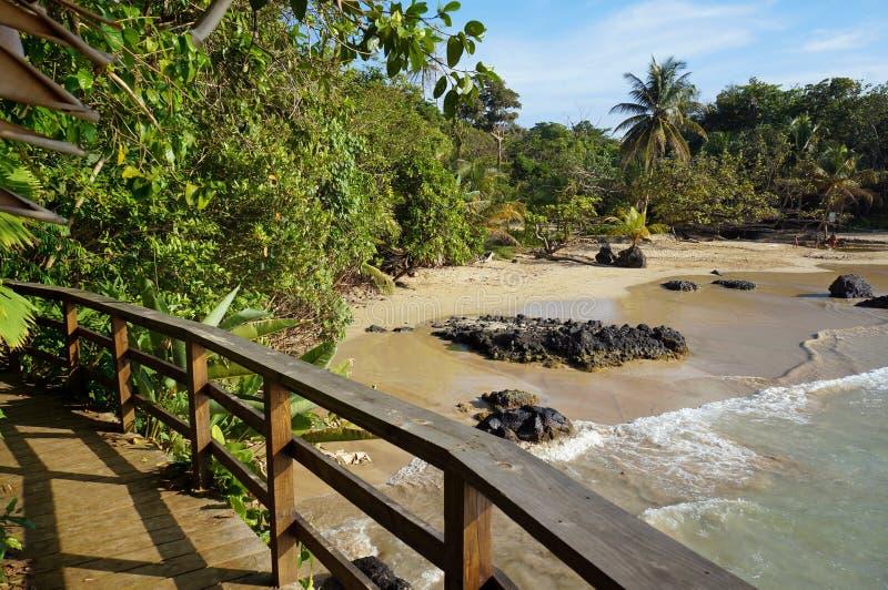 Ξύλινη γέφυρα για πεζούς πέρα από μια τροπική παραλία στοκ φωτογραφίες