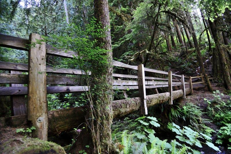 Ξύλινη γέφυρα για πεζούς σε ένα πάρκο στοκ εικόνες