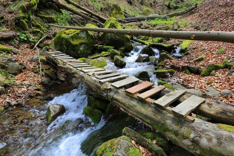 Ξύλινη γέφυρα πέρα από το ρυάκι βουνών στοκ εικόνα