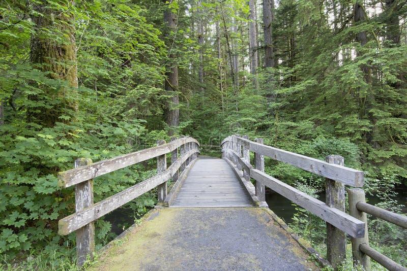 Ξύλινη γέφυρα ποδιών κατά μήκος του ίχνους πεζοπορίας στοκ εικόνες