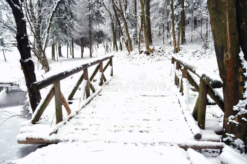 Ξύλινη γέφυρα σε μια παγωμένη λίμνη σε ένα χειμερινό δάσος στοκ φωτογραφίες με δικαίωμα ελεύθερης χρήσης