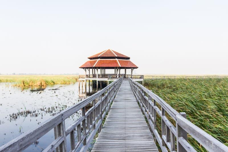 Ξύλινη γέφυρα στη λίμνη λωτού στο εθνικό πάρκο roi SAM khao yod στοκ εικόνα