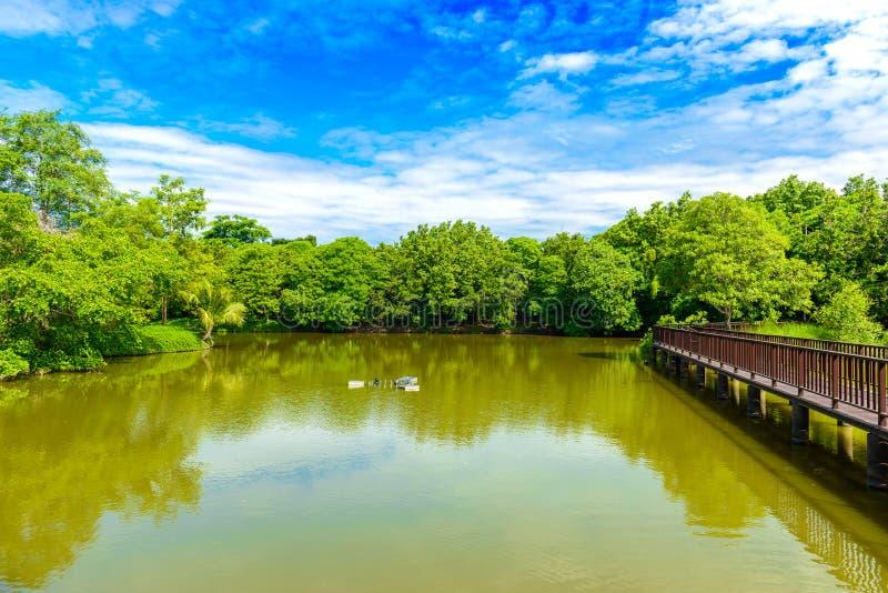Ξύλινη διάβαση πεζών γεφυρών στο πάρκο Sri Nakhon Khuean Khan και βοτανικός στοκ εικόνες με δικαίωμα ελεύθερης χρήσης