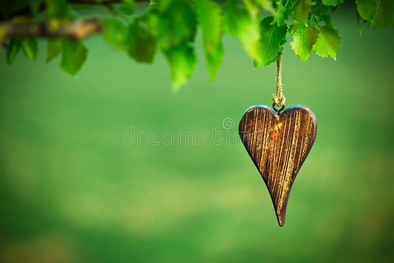 Ξύλινη μορφή της καρδιάς στοκ φωτογραφία