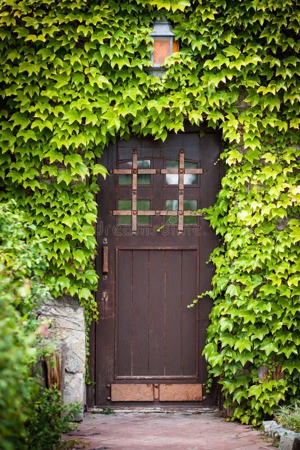 Ξύλινη πόρτα με τα πράσινα φύλλα στοκ εικόνα με δικαίωμα ελεύθερης χρήσης