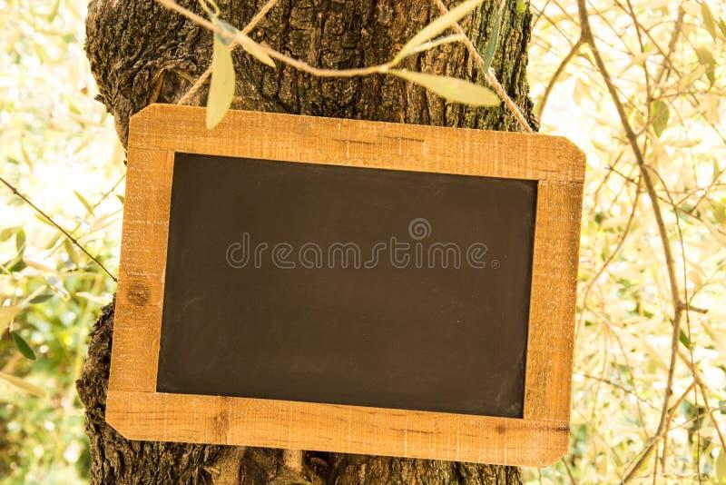 Ξύλινη πλάκα στοκ φωτογραφία με δικαίωμα ελεύθερης χρήσης
