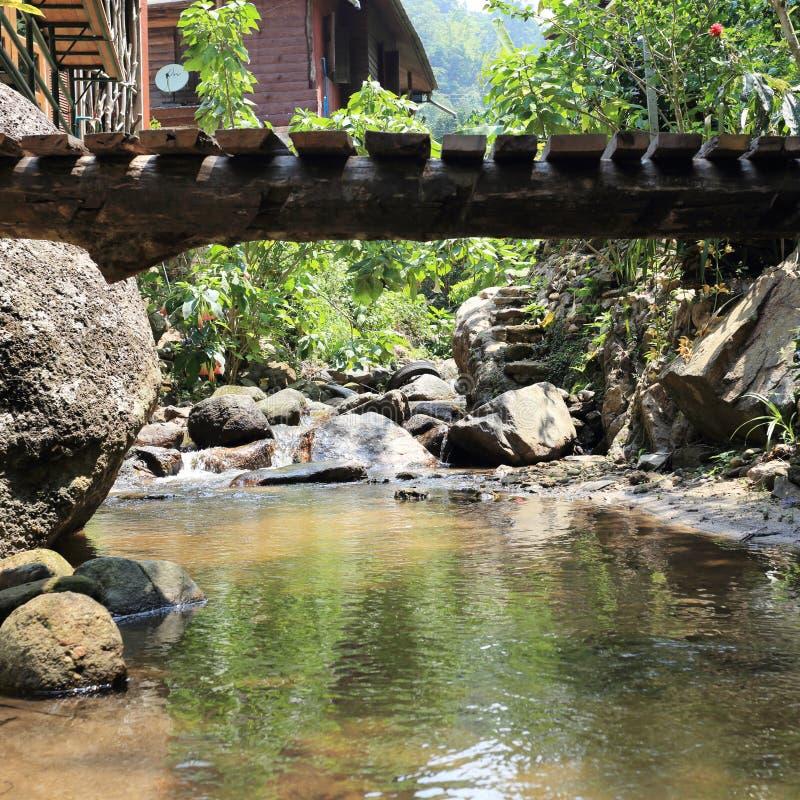 Ξύλινη σανίδα γεφυρών επάνω από τον ποταμό στοκ εικόνες με δικαίωμα ελεύθερης χρήσης