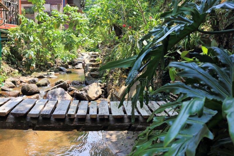 Ξύλινη σανίδα γεφυρών επάνω από τον ποταμό στοκ φωτογραφία με δικαίωμα ελεύθερης χρήσης