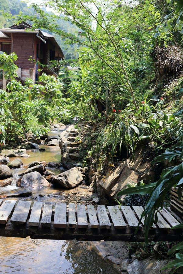 Ξύλινη σανίδα γεφυρών επάνω από τον ποταμό στοκ φωτογραφίες με δικαίωμα ελεύθερης χρήσης