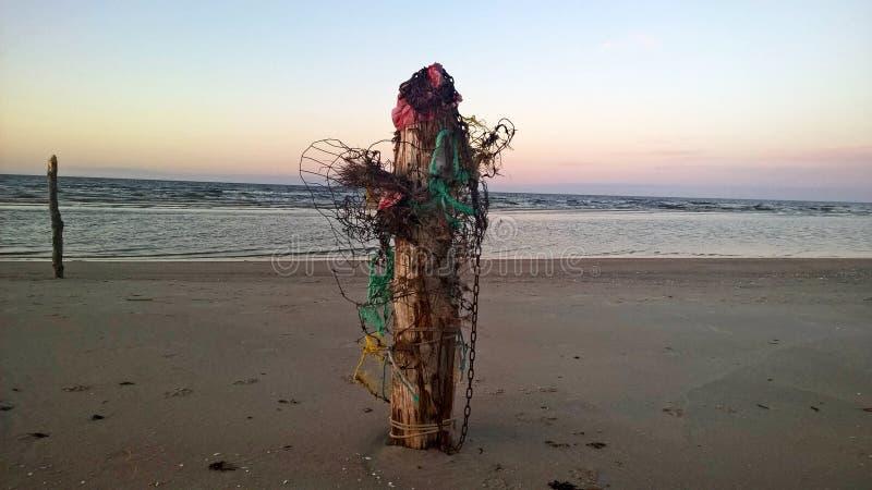 Ξύλινοι πόλοι στην παραλία στοκ εικόνες με δικαίωμα ελεύθερης χρήσης
