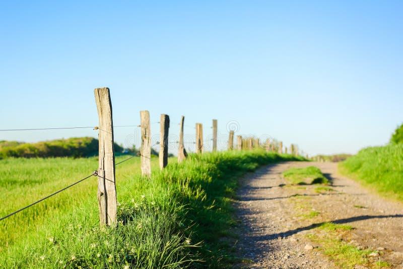 Ξύλινοι φράκτες σε μια επαρχία στοκ εικόνες